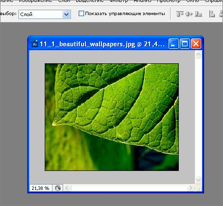 открытое изображение в фотошопе, картинка в фотошопе