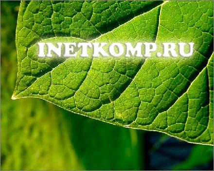 inetkomp.ru