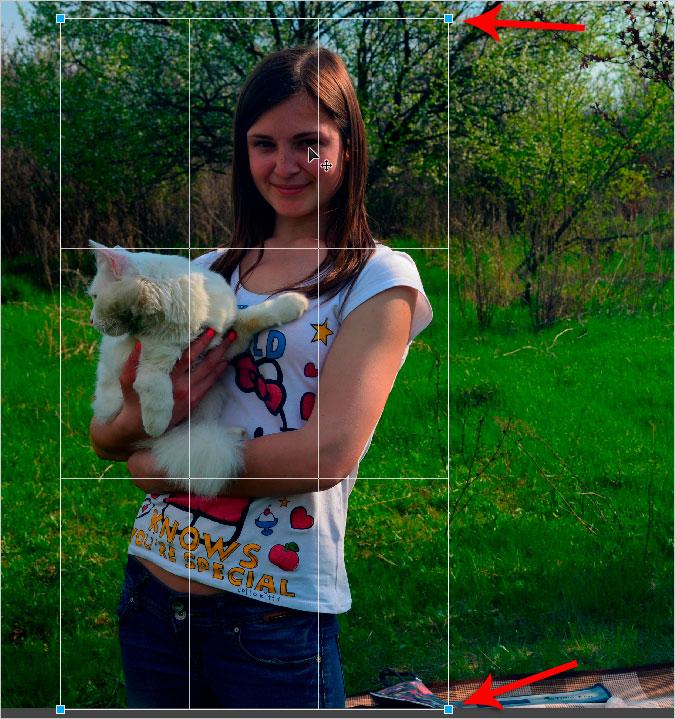 Обрезать фото в фотошопе онлайн